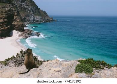 The Cape of Good Hope and Dias beach on the Atlantic coast of the Cape Peninsula, South Africa.