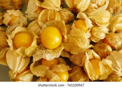 Cape Gooseberry  from top view , selective focus  .