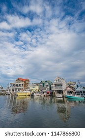 Cape May Harbor, in Cape May, New Jersey.