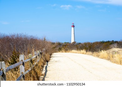 Cape May Lighthouse Trails