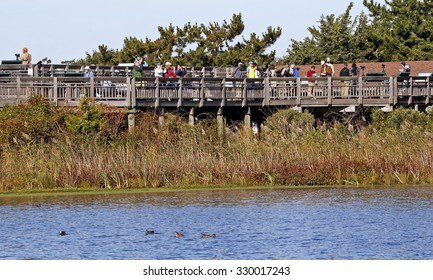 Cape May NJ, Oct 11 2015: Volunteers spot and count raptors and birds of prey passing over during the annual hawk watch at the lighthouse platform in Cape May New Jersey.