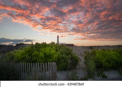 Cape May Point landscape