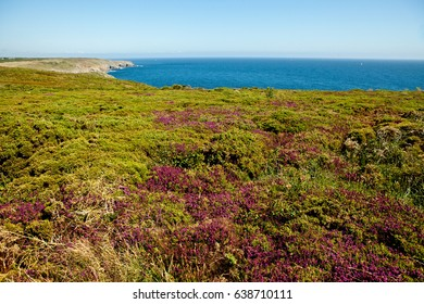 Cape Ra, (Pointe du Raz), westernmost France point/ Brittany / France / Europe