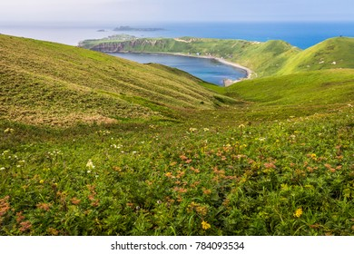 Cape Sukoton, Todo Island, and the wildflower scenery of the Cape Tour Hiking Course on Rebun Island, Japan