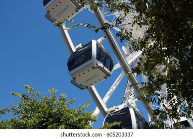 Cape Town, South Africa - March 02, 2017: Cabins of the Cape Wheel at the V&A Waterfront viewed through the trees