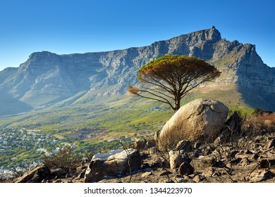 Cape Town, Table mountain in morning light