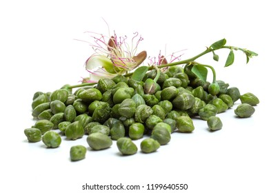 Caper with green leaves and capers flower on white background