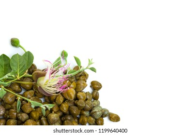 Capers with caper flower on white, organic food background