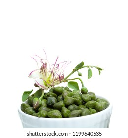 Capers isolated on white. Caper in white bowl