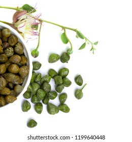 Capers. Pickled capers, raw bud and  caper plant on white background, top view