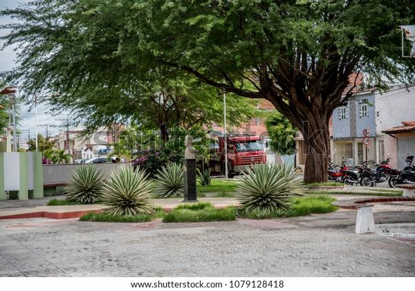 Capim Grosso Bahia fonte: image.shutterstock.com