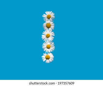 I capital letter in daisy flowers on blue background