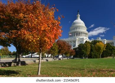 Capitol Building in Autumn - Washington D.C. United States of America