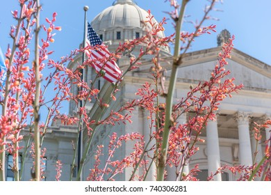 Capitol building behind flowers