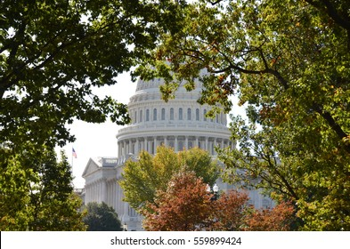 Capitol Building and the fall trees