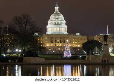 Capitol Building Washington DC Christmas Tree