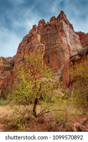 Capitol Reef Desert Landscape. The incredible sandstone geological formations feature layers of golden sandstone, canyons and striking rock formations.Capitol Reef National Park, Utah, USA.