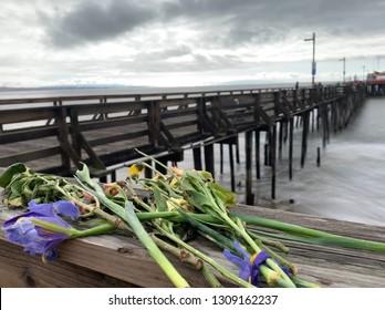 Capitola wharf California beach