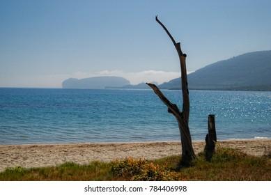 capocaccia beach horizon