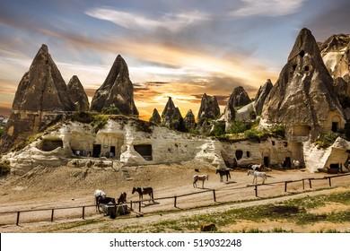 Cappadocia. Horses in mountain landscape, Turkey