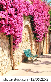 Capri. Italy. Bougainvillea on the background of a stone wall above the green bench.