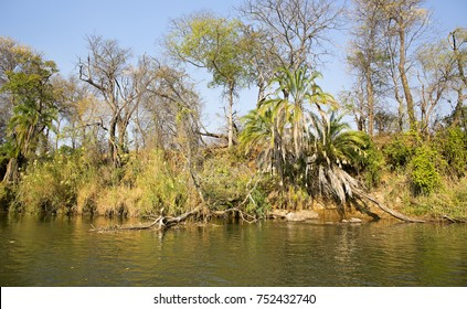 CAPRIVI STRIP, NAMIBIA: The might Okavango River at the border of Namibia and Angola