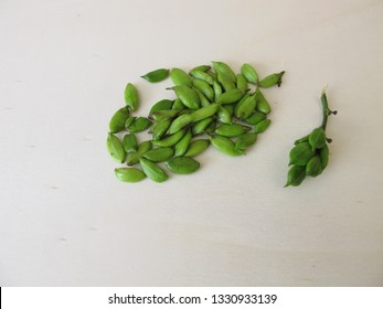Capsule fruits from lilac on wooden board