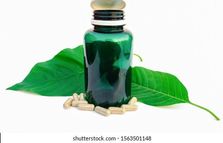 capsule of katom leaf (Mitragyna speciosa) Mitragynine on white background isolate image,Drugs and Narcotics,Thai herbal which encourage health