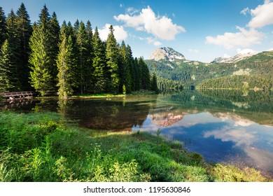 Captivating morning view of Black Lake ( Crno Jezero ). Wonderful summer scene of Durmitor Nacionalni Park, Zabljak location, Montenegro, Europe. Beauty of nature concept background.