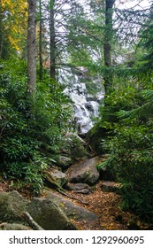 I captured this image in the Ramsey Cascades area of Great Smoky Mountains National Park near Gatlinburg, Tennessee. Thick forest and rhododendrons nicely frame the falls.