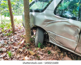 Car accident collided with trees