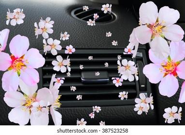 car, air condition, flowers freshener fragrant