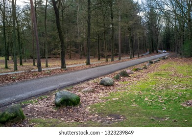 Car drives along a narrow asphalt road passing through a beautiful forest, at a turn, the highway is lined with large stones, and there is a sidewalk in the trees nearby.