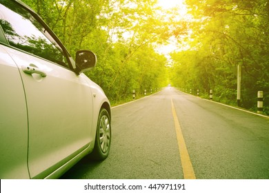 car driving into forest