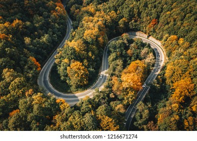Car driving on a winding road trough a forest
