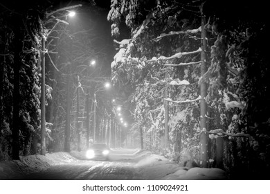 Car driving in winter forest covered with snow. Night scene, street lights along road.