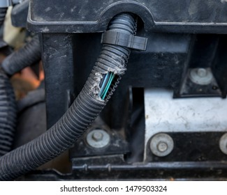 wiring harness for car images, stock photos \u0026 vectors shutterstock CDI Wiring Harness