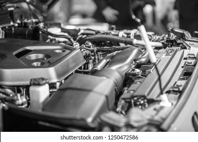 Car engine compartment is opened