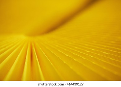 car filter close-up