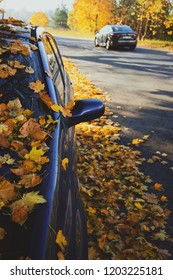 Car with leaves on the road in autumn