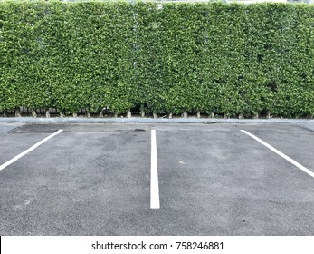 A car lots of condominium is decorated with hard cement floor big bushes and trees