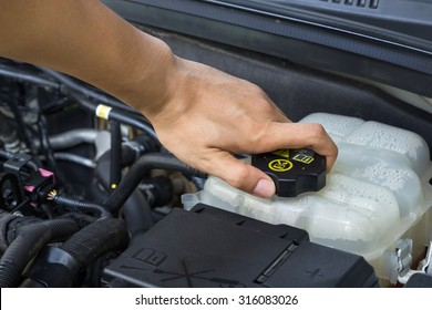 Car repair service, Auto mechanic checking water level in a engine