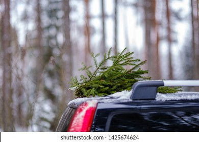 car root with antenna in nature  with blur background