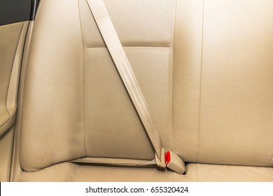 Car seat belt in Back passenger seats in modern car. Interior detail.