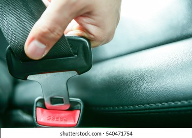 Car seat belt/Car seat belt