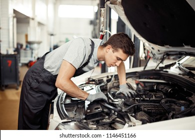 At a car service: a qualified mechanic is dealing with a car engine