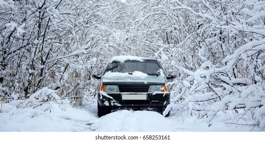 The car in the snow-covered bushes