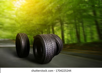 Car tire on summer forest road with trees background. Change for winter tire.