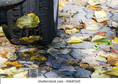 Car tire over a bed of wet leaves