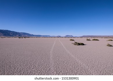 Car trails on a playa of Alvord Desert, South Ogeron. Steens mountains in the background